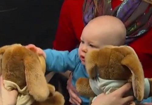 מה תינוקות מלמדים אותנו על מוסר